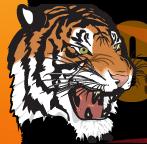 Pre-Season Game 4 v Toowoomba Souths Tigers